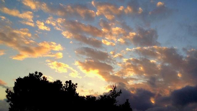 国頭村森林公園の夕暮れ空