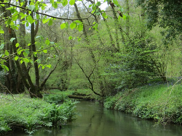 The Tillingbourne