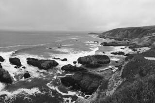 Bodega Bay - Bodega Head bw