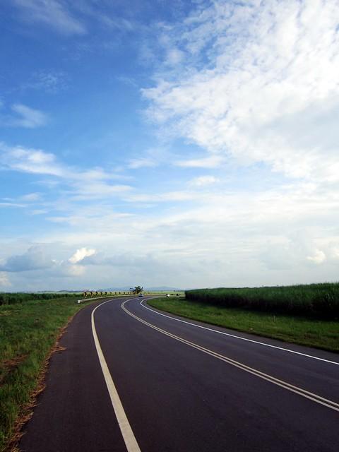 Ladang Tebu