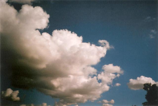 tijuana's sky