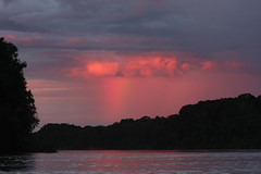 Guyana-0103