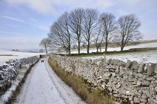 English country lane in snow by keartona