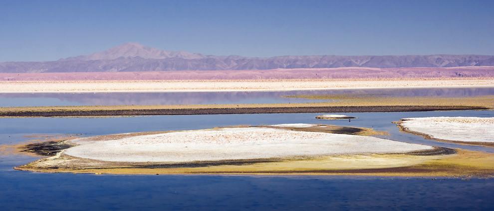 Un fuerte contraste de colores, son el indicio inequívoco de la variada cantidad de sales y minerales que conforman esta laguna en la Reserva nacional de Flamencos. Atacama, Chile(Guillermo Morales)