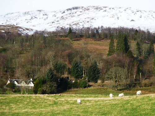 Rural Scene, Trossachs