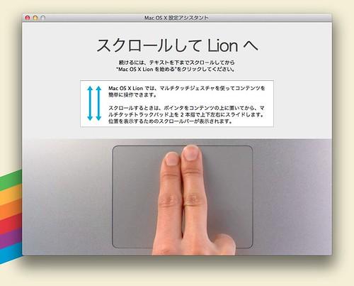 lion04