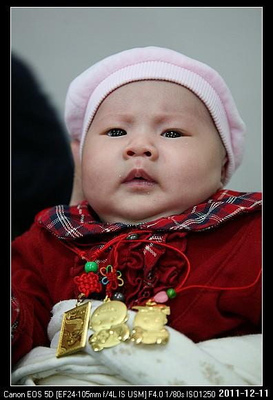 20111211Cherry3