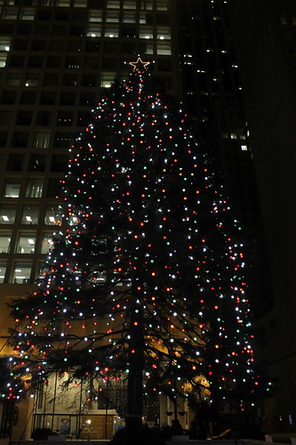 Daley Plaza Tree