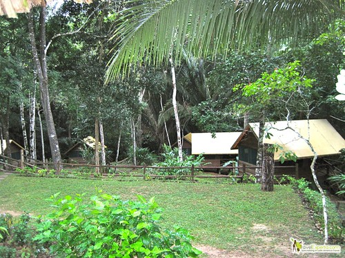 Glamping in Belize - Macal River Camp Hotel Review - Campsite