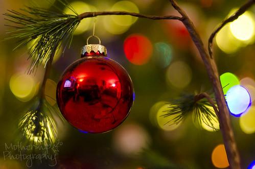 圣诞节故事(1个中的1个)