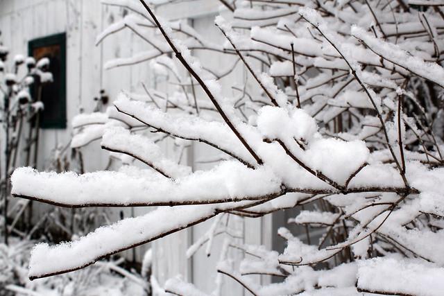 winter solstice snow
