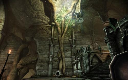 Brecilian Forest Ruins (Upper Ruins) 011