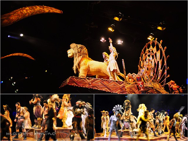 Festival of the Lion King (2)