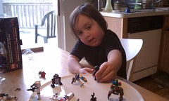 she loves the minifigures