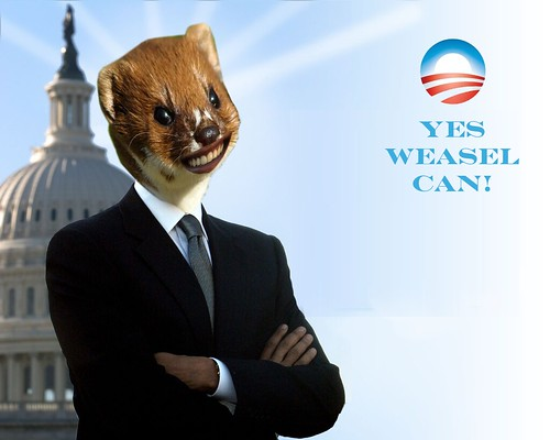 YES WEASEL CAN by Colonel Flick