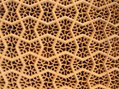 Marble webs