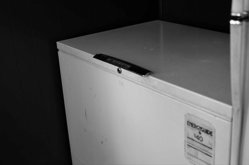 Invest in a Deep Freezer (27/365)