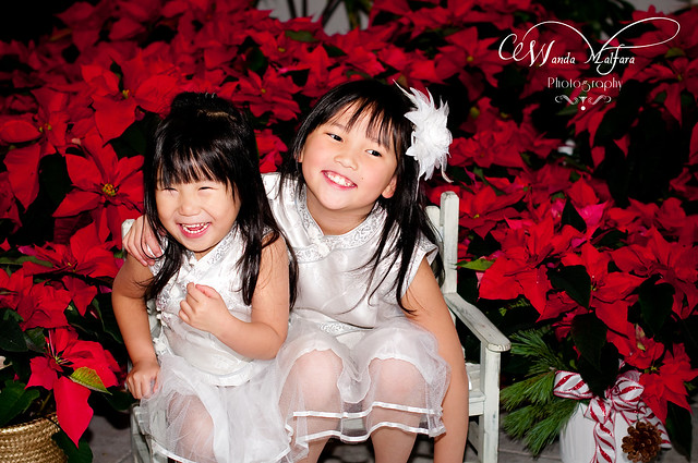 Christmas Card pix 2011 210 blog