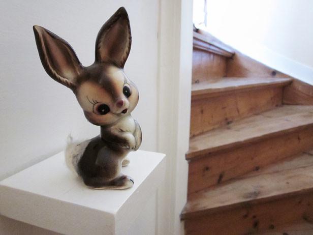 kaniner02