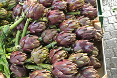thistle(0.0), plant(0.0), vegetable(1.0), flower(1.0), artichoke(1.0), produce(1.0), food(1.0),