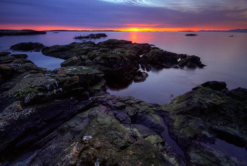 Cattle Point Sunrise