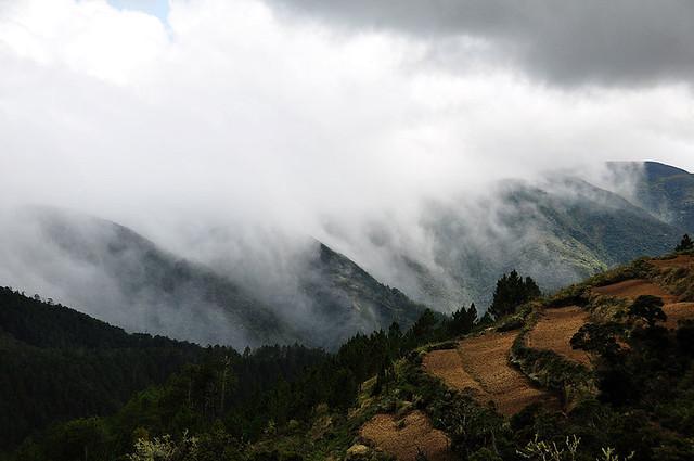 Mt. Pulag, Cordilleras, Benguet, Philippines