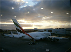 Emirates Airbus A380 at Auckland International Airport