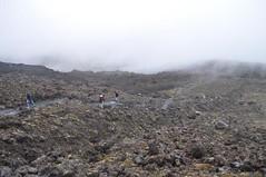 Paisatges volcànics