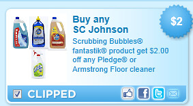 Scrubbing Bubbles Fantastik Product Coupon