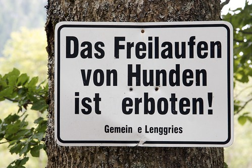 Freilauf; copyright 2010: Georg Berg