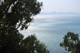 Vue prise des hauteurs de Sidi Bou Said