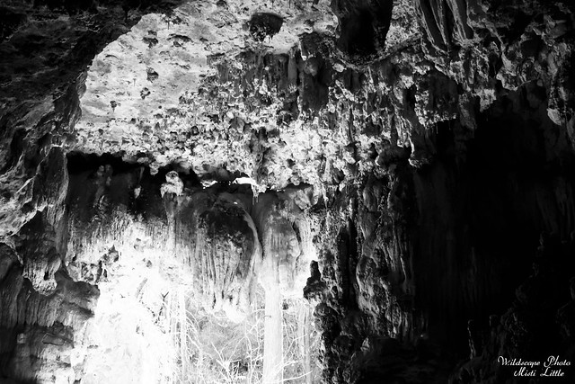 westcave4