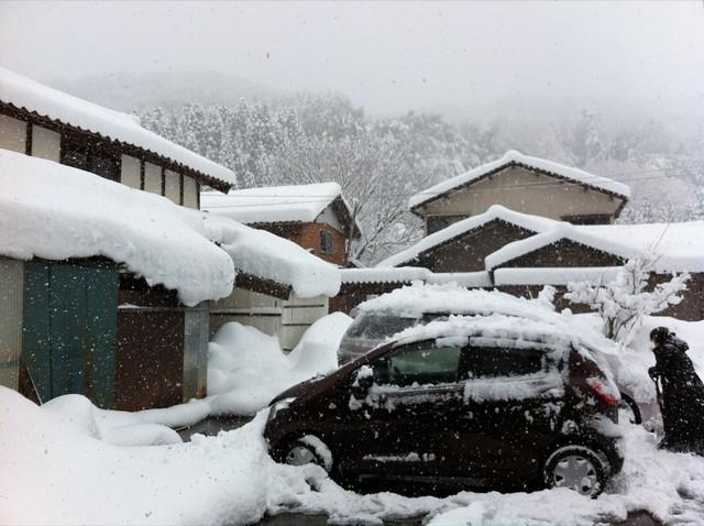 雪です^^;