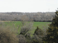 January field, seen from Erwin Park