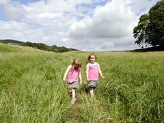 Long Grass, Hawes 2007