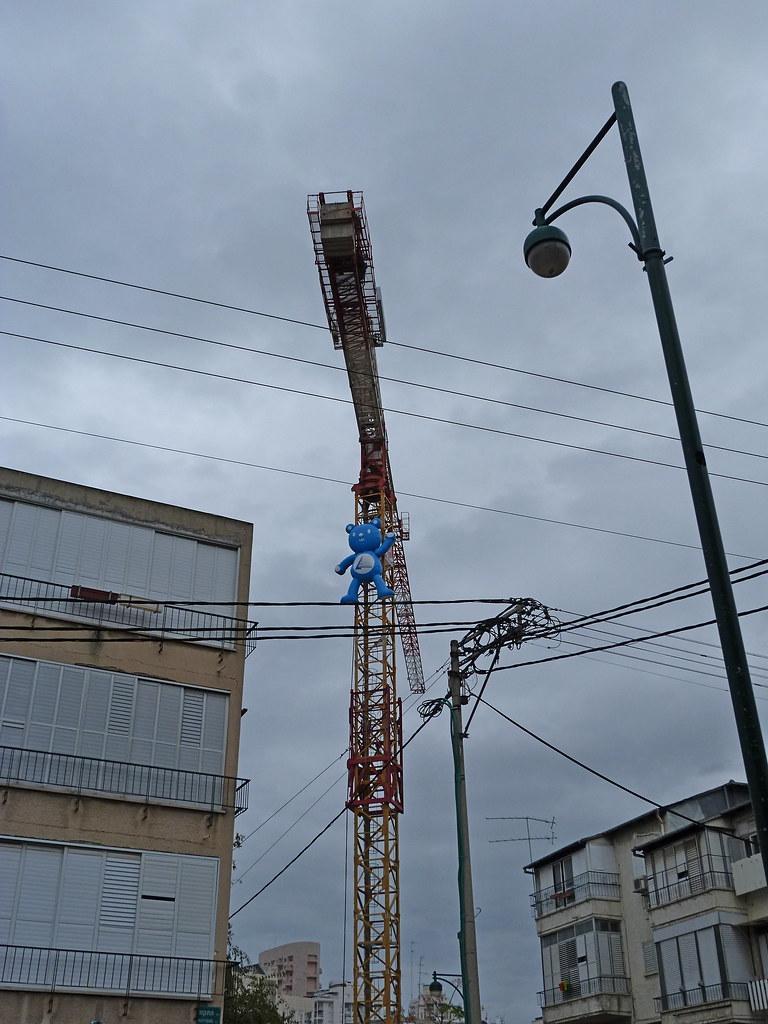 30-01-2012-crane-bear