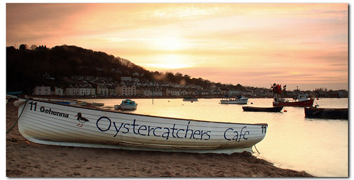 oystercathchers cafe