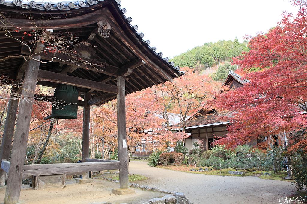 京都高雄西明寺紅葉