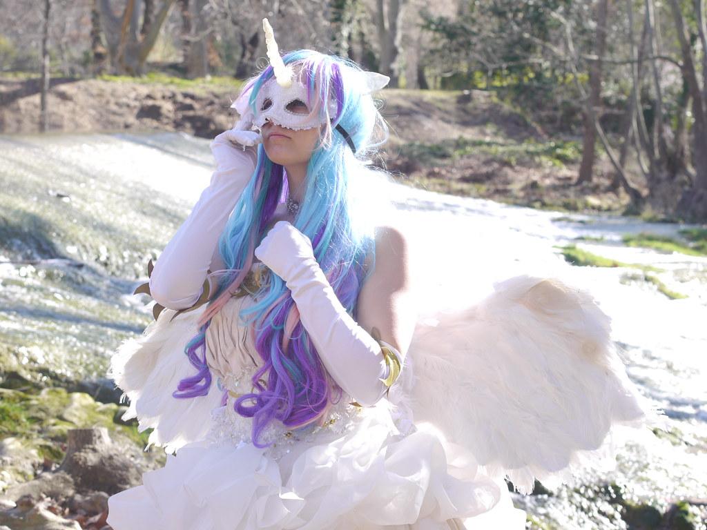 related image - Shooting Celestia - My Little Pony - 2014-02-23- P1780590