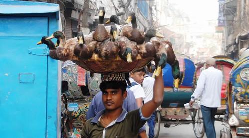 236 Dhaka (12)