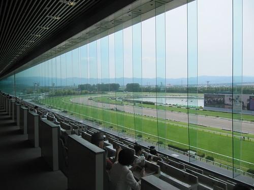 京都競馬場指定席からの景色