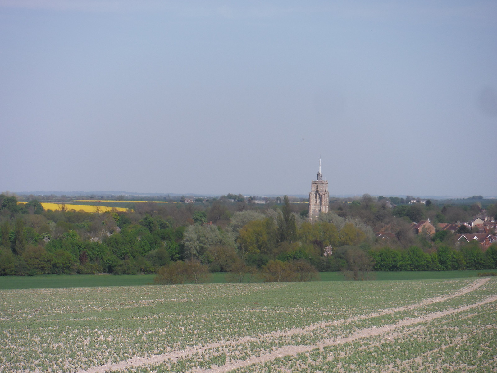 Ashwell Church Spire, from Newnham Hill SWC Walk 91 - Baldock Circular