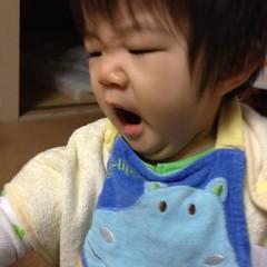 おはよう!あくびとらちゃん(2011/11/26)