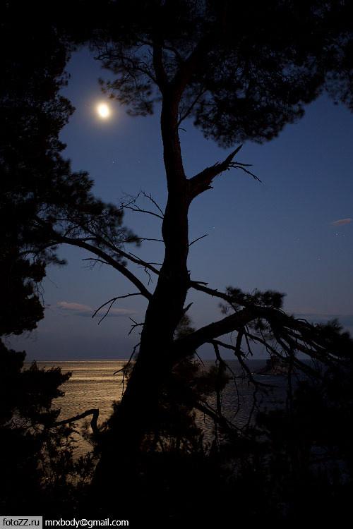 11_night-[20110810_8311]