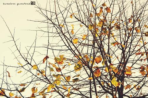 agur otoño
