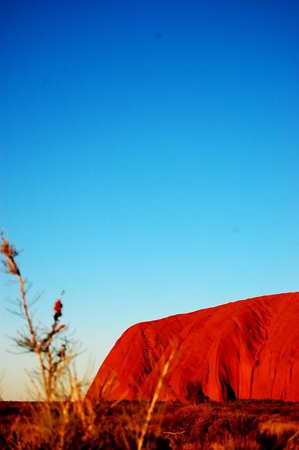 Uluru Half