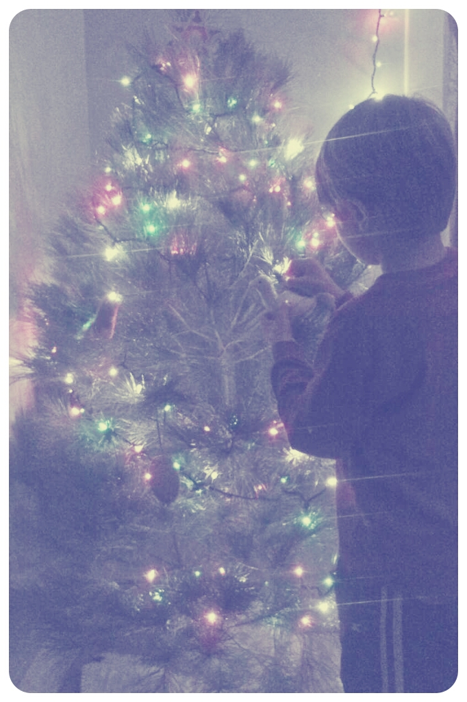 day 2703: odin decorates his Very Own Tree.
