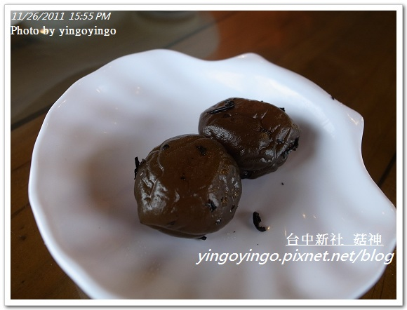 台中新社_菇神20111126_R0044210