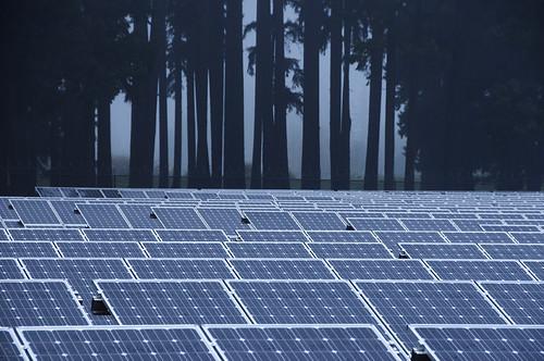 Solar panels in the mist