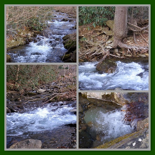 trees winter wild mountains water rock creek river flow nc stream mosaic roots course rapids rush rhododendron watershed boundary walkercreek froth pisgahnationalforest 2011 mystuart